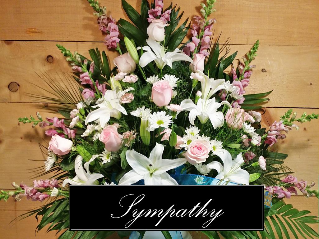 sympathy-gallery.jpg